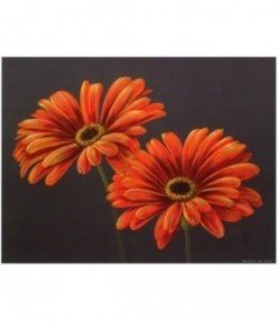 IMAGE 3D FLEUR ORANGE F0ND GRIS  24X30
