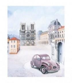 IMAGE 3D PARIS 2000733 40X50