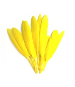 PLUMES DROITES X  10 - JAUNE CANARIE