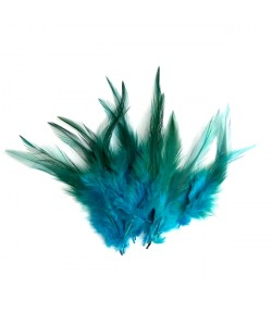 PLUMES X  10 - TURQUOISE