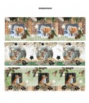 DECOS FILMS RETRACTABLES 12 CM - WOODLAND WINTER 43
