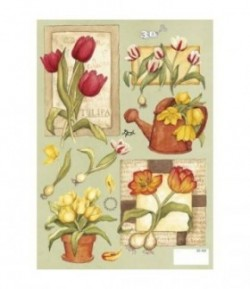 FEUILLE A5 3D420 TULIPES