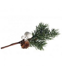 BRANCHE SAPIN ET BAIES BLANCHES