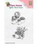 TAMPONS PLANTES - IFS003