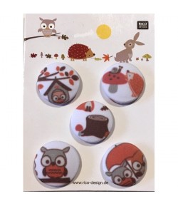 BOUTONS AUTOMNE X 5