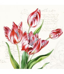 SERVIETTE TULIPES