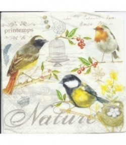 SERVIETTE NATURE