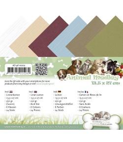 24 CARTES 13.5X27 ANIMAL MEDLEY