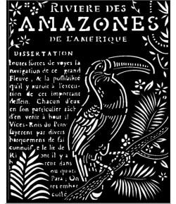 POCHOIR AMAZONIA TOUCAN 20X25 EP 0.25 KSTD065 STAMPERIA