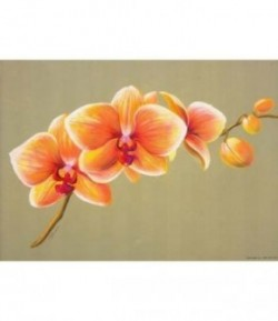 IMAGE 3D BRANCHE ORCHIDEES 24x30 9907180