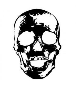 TAMPON CLEAR - TETE DE MORT
