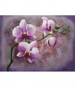 IMAGE 3D 30X40 ORCHIDEE ROSE GK3040032