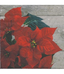 SERVIETTE POINSETTIAS