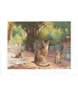 IMAGE 3D LES CHATS 24X30 AS392